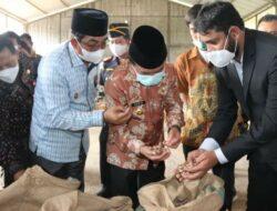 Gubernur Al Haris Lepas Ekspor  Perdana 18 Ton Pinang Ke-Saudi Arabia