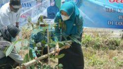 Kunjungi Tanjung Jabung Barat, Ketua Tim Penggerak PKK Provinsi Jambi Tanam Pohon dan Berikan Bantuan Buku