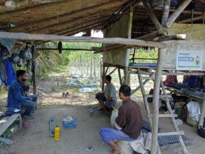 Petani Muaro Jambi Menjerit, Perpanjangan PPKM Level 4 Membuat Harga Sayuran Semakin Lesu