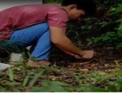 Mahasiswa Baru Biologi FST UNJA Tanam Pohon Secara Virtual